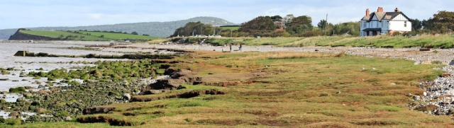 04-marshy-shore-hest-bank-ruth-hiking-round-morecambe-bay