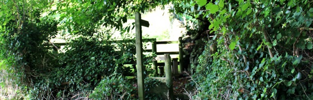 08-footpath-from-arrad-foot-ruth-livingston-in-cumbria
