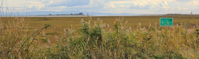 09-piel-island-across-snab-sands-ruth-hiking-around-walney-island-barrow