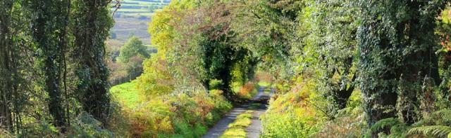 10-lane-ruth-walking-the-cumbrian-coast-path