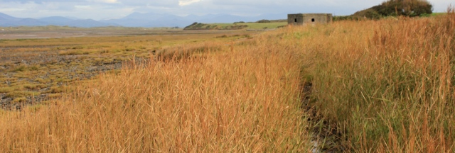 11-pillbox-3-ruth-walking-the-english-coast-duddon-estuary