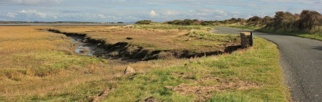 11-wylock-marsh-ruths-coastal-walk-walney-island