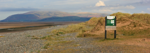 13-north-walney-national-nature-reserve-ruth-coastl-walking-barrow