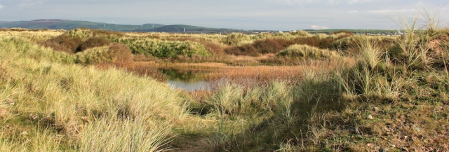 15-empty-sand-dunes-north-walney-nature-reserve-ruth-livingstone