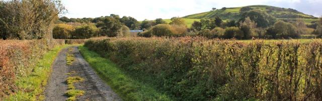 15-great-oath-hill-ruth-walking-in-cumbria
