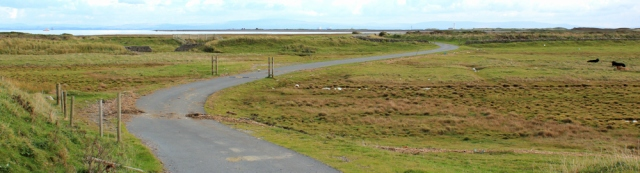 17-low-road-south-walney-nature-reserve-ruths-coastal-walk-barrow