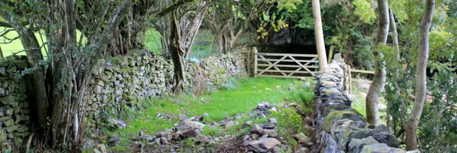 17-sunken-lane-ruths-coastal-walk-cumbria