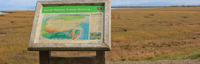 18-south-walney-nature-reserve-ruths-coastal-walk