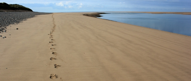 20-footprints-on-the-beach-ruth-livingstone