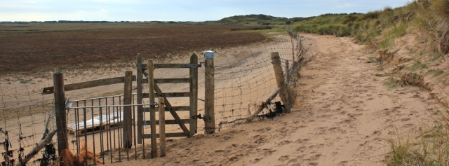 25-fences-on-marsh-north-walney-nature-reserve-ruths-coastal-walk
