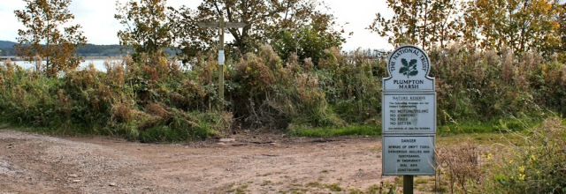 25-plumpton-marsh-ruth-walking-the-leven-estuary-to-barrow-on-furness