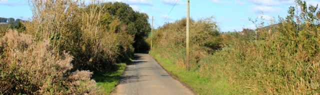 27-road-walking-to-lakeland-leisure-park-ruth-walking-the-english-coast