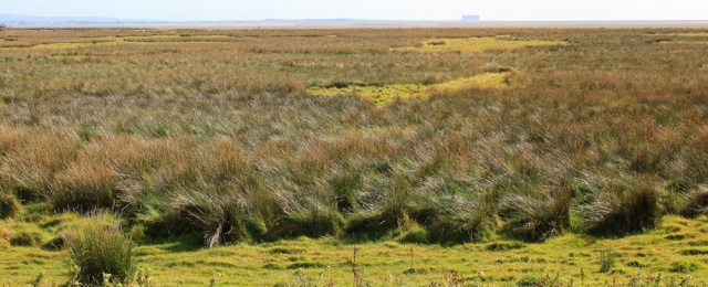 29-across-marsh-and-morecambe-bay-to-heysham-ruth-walking-the-english-coast