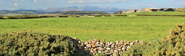 31-farmland-and-cumbrian-hills-ruth-walking-the-english-coast