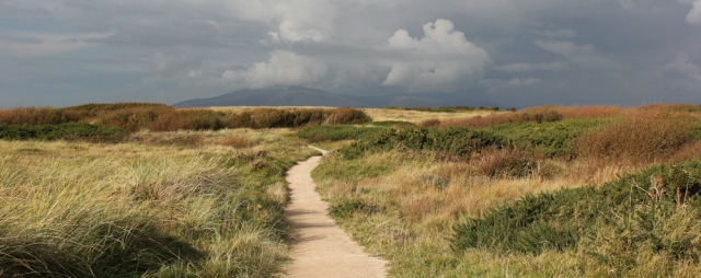 31-north-walney-nature-reserve-ruth-livingstones-coastal-walk