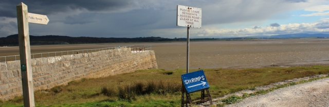 31-public-byway-across-cartmel-sands-ruth-walking-in-morecambe-bay