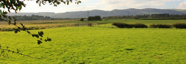 32-footpath-across-fields-ruths-coastal-walk-cumbria