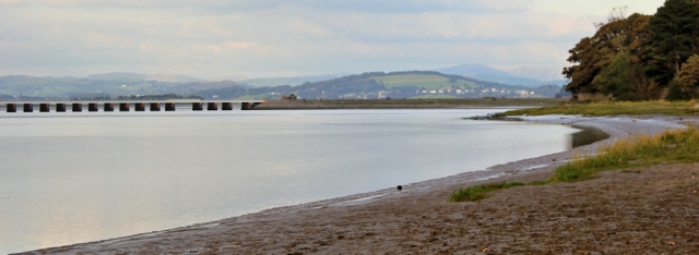 34-arnside-and-train-viaduct-ruth-livingstone
