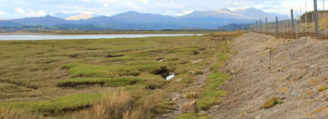 39-sandside-marsh-ruth-livingstone-walking-the-english-coast-up-the-duddon-estuary-cumbria