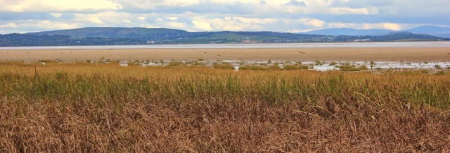 47-view-across-ulveston-sands-morecambe-bay-ruth-livingstone