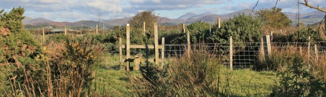06-hidden-stile-ruth-livingstone-walking-the-english-coast