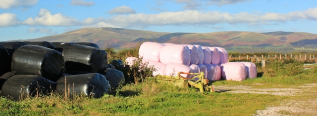 08-pink-hay-bales-ruth-livingstone-walking-the-english-coast-cumbria