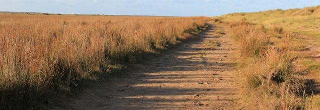 03-haverigg-dunes-and-marsh-ruth-walking-the-english-coast-cumbria
