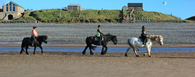 07-windswept-horses-silecroft-ruth-walking-the-english-coast-cumbria