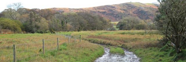 13-muddy-track-broadoak-beck-ruth-livingstone-in-cumbria