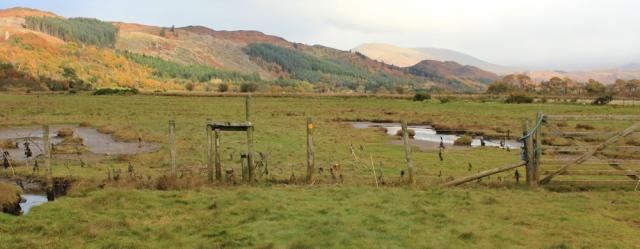 16-footpath-across-esk-valley-ruth-walking-the-english-coast-cumbria
