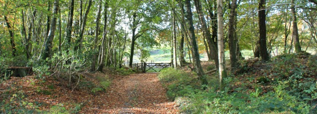 21-permissive-footpath-to-muncaster-castle-ruth-walking-the-english-coast-cumbria