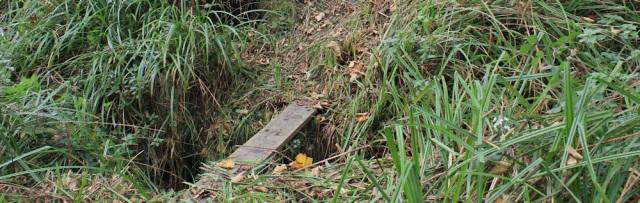 25-plank-bridge-ruth-livingstone-walking-the-english-coast