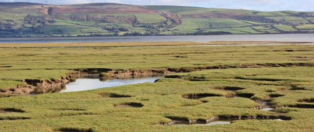 26-water-filling-the-marsh-millom-ruth-walking-the-english-coast