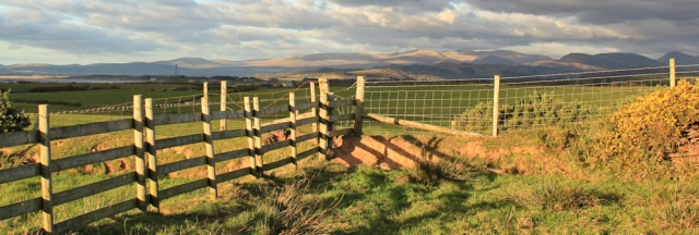 37-climbing-fences-ruth-livingstone-in-cumbria