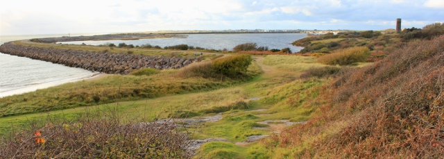 38-millom-pond-hodbarrow-nature-reserve-ruth-livingstone
