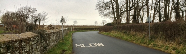 01-road-from-abbeytown-ruths-coastal-walk
