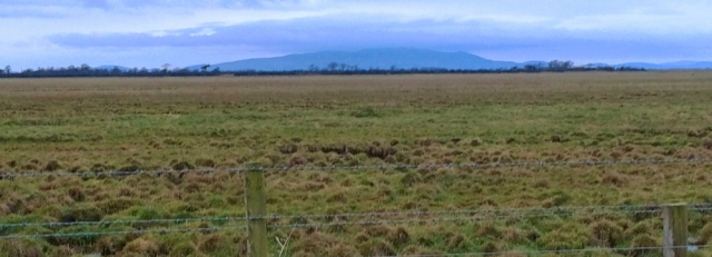 08-scotland-across-the-marsh-ruth-hiking-the-solway