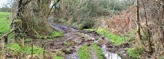 11-muddy-track-to-drigg-ruth-livingstone-hiking-in-cumbria
