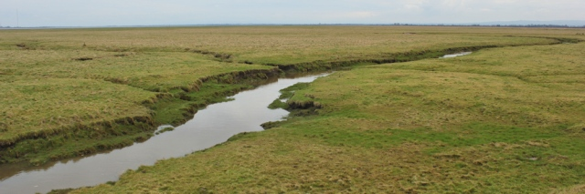 15-skinburness-marsh-ruths-coastal-walk-around-britain-cumbria