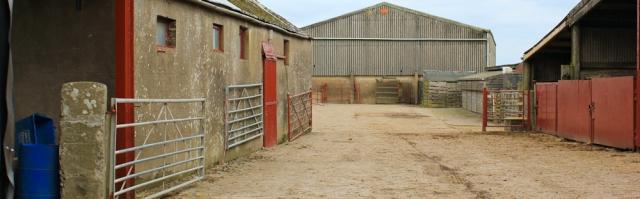 a03-footpath-through-calvo-farm-ruth-livingstone-walking-the-english-coast-cumbria