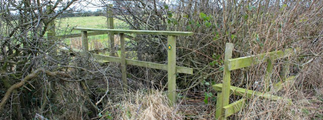 a08-overgrown-bridge-ruth-livingstone-walking-the-english-coast-cumbria