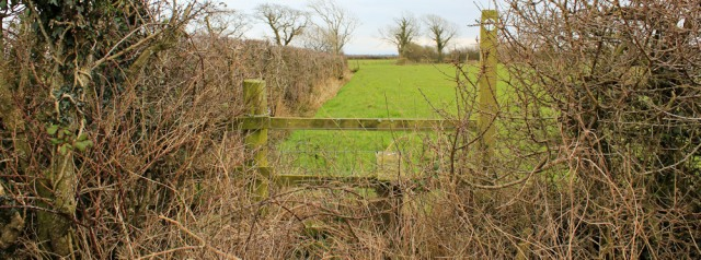 a10-another-overgrown-stile-ruth-livingstone-walking-the-english-coast-cumbria