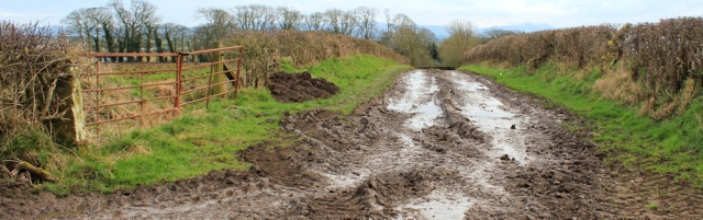 a27-muddy-farm-track-ruth-livingstone-walking-the-english-coast-cumbria