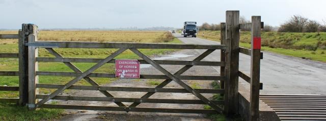 07 cattle grid, Ruth walking the Hadrian Wall Path to Carlisle