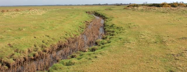 10 Ruth Livingstone in Burgh Marsh, Burgh by Sands