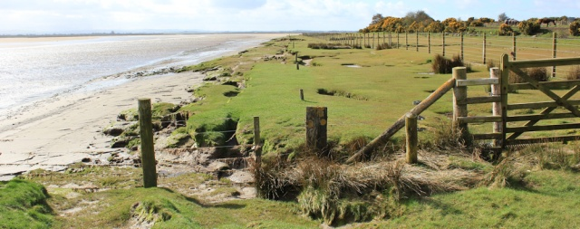 12 Anthorn shore, Ruth's coastal walk, Solway, Cumbria