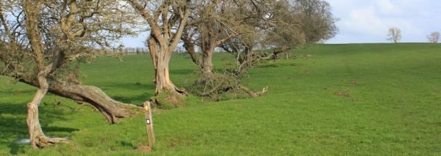 17 Hadrian's Wall path, Ruth hiking in Cumbria