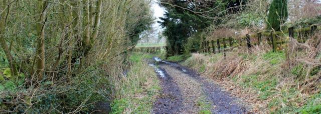 23 footpath to Grinsdale, Ruth's coastal walk, Cumbria