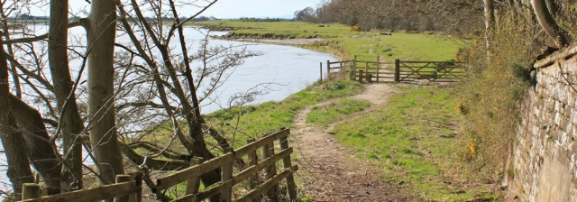 24 Castletown marshes, Ruth Livingstone hiking near Carlisle - Copy