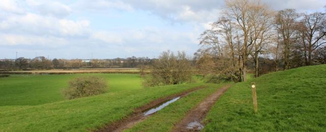 26 walking to Grinsdale along the Hadrian's Wall Path, Ruth's coastal walk, Cumbria